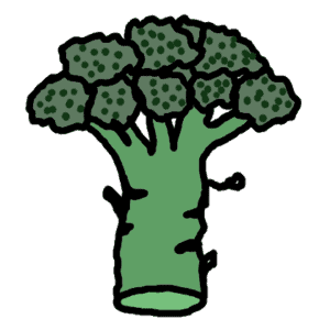 broccoli - dessin