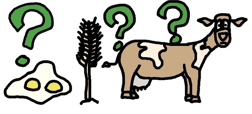 question sur les oeufs, le blé, le lait - dessin comic