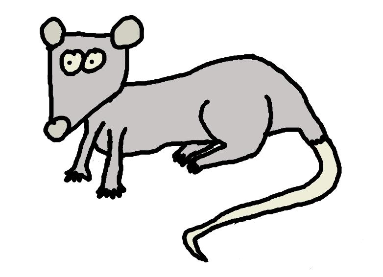 rat - comic