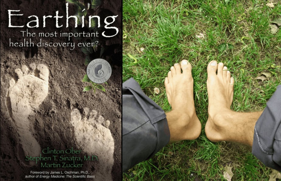 grounding earthing book - livre connection / mise à la terre