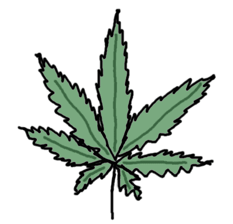 feuille de cannabis - dessin