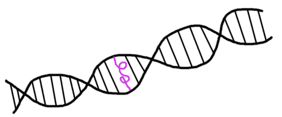 mutation génétique - comic