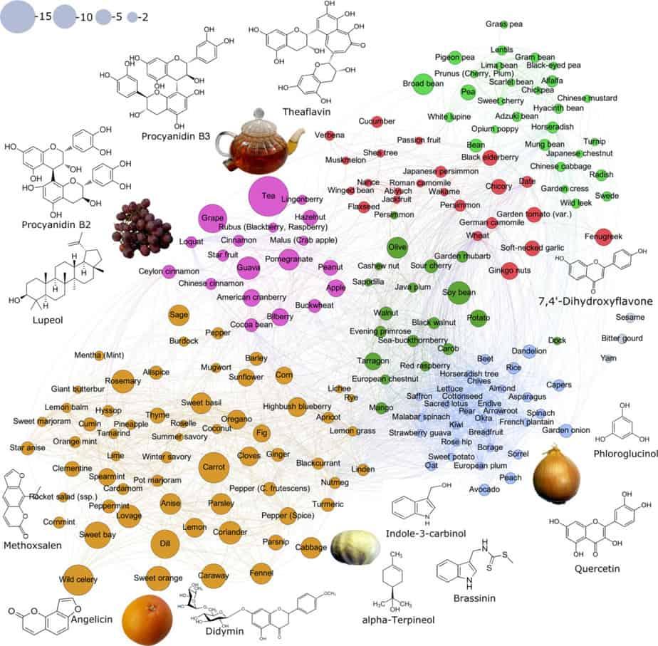 regroupement des molécules et aliments anti-cancer