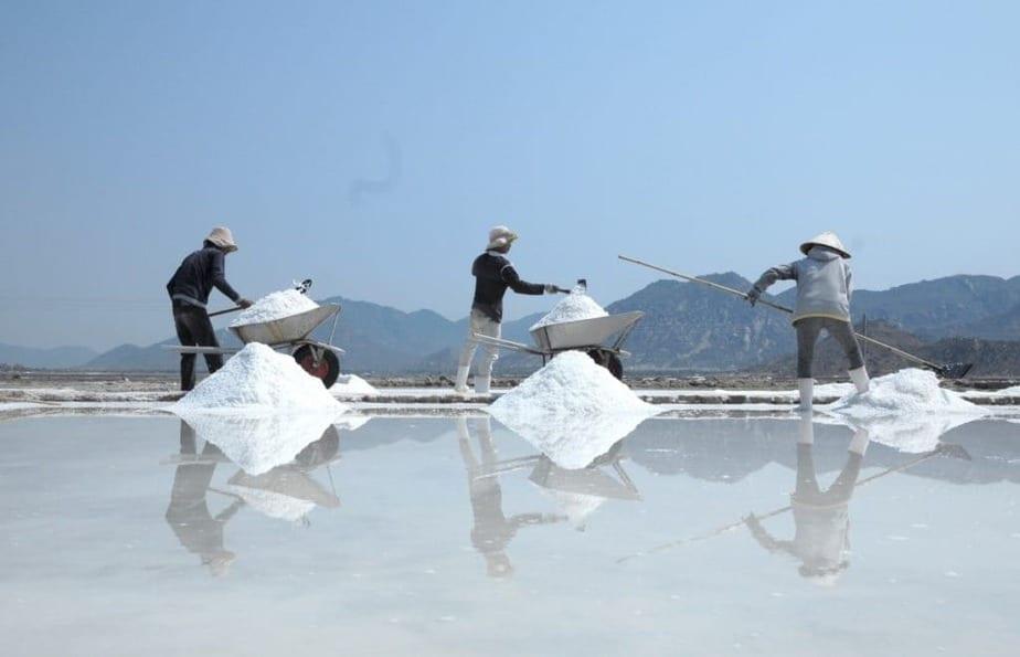 sel et travailleurs