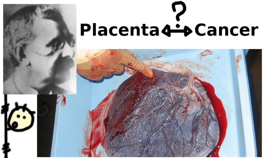 john beard, embryologist, placenta and cancer