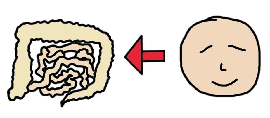IBS? SIBO? Digestion difficile ou douloureuse? N'oubliez pas la composante psychologique!