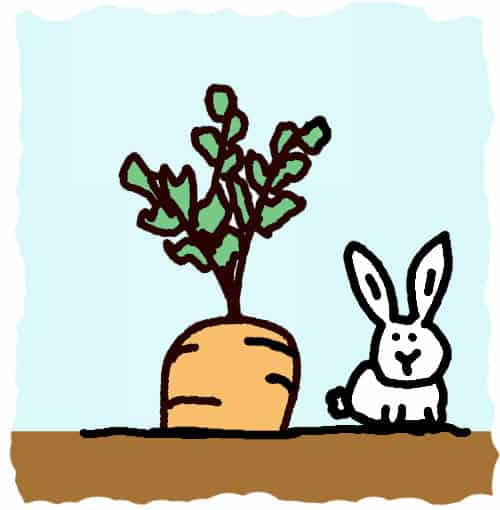 dessin : lapin et carotte