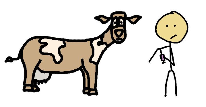 Diabète de Type 1: un lien avec le lait de vache?